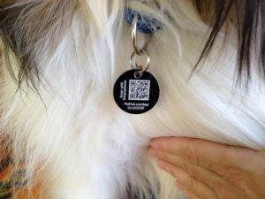 QR code chien